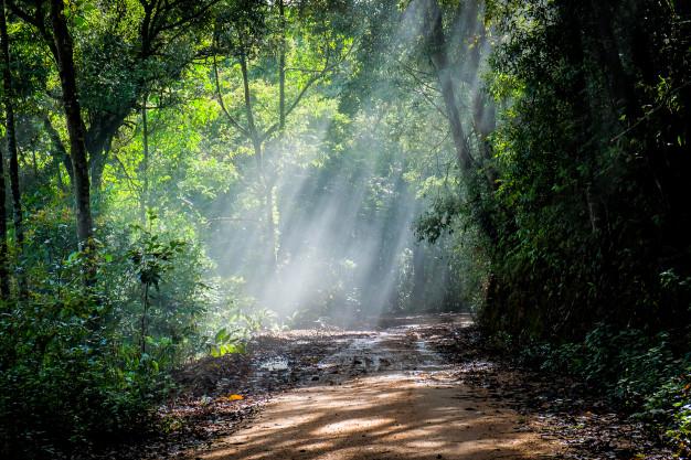 kisah rasulullah mengelola kekayaan alam
